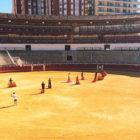 Actividades2 – Malaga Plus